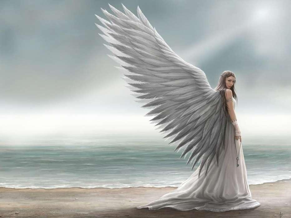 Bild Fürs Handy Kostenlos Herunterladen Angelsgirlsfantasy