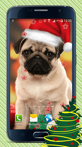 Download Tiere Live Wallpaper Christmas dogs für Android kostenlos.