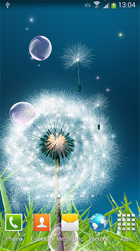 Download Blumen Live Wallpaper Dandelions by Amax LWPS für Android kostenlos.