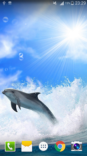 Download Aquarien Live Wallpaper Dolphin by Live wallpaper HD für Android kostenlos.