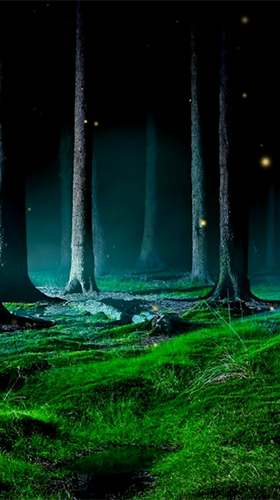 Kostenlos Live Wallpaper Fireflies by Wallpapers and Backgrounds Live für Android Smartphones und Tablets downloaden.