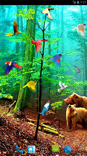 Download Interaktiv Live Wallpaper Forest birds für Android kostenlos.