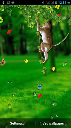 Download Tiere Live Wallpaper Funny monkey by Galaxy Launcher für Android kostenlos.