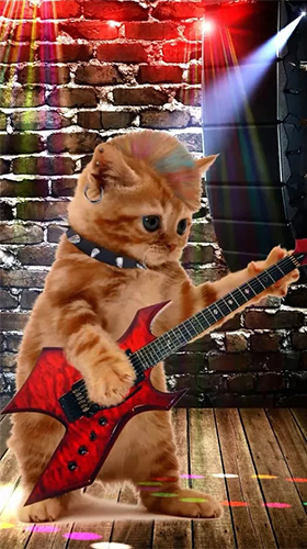 Download Musik Live Wallpaper Funny pets: dancing and singing für Android kostenlos.