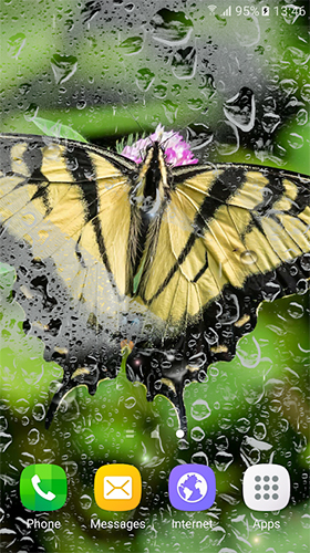 Download Live Wallpaper Macro butterflies für Android-Handy kostenlos.