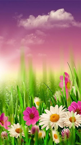 Download Landschaft Live Wallpaper Spring by HQ Awesome Live Wallpaper für Android kostenlos.