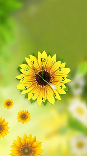 Download Blumen Live Wallpaper Sunflower clock für Android kostenlos.