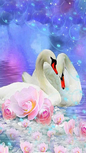 Download Landschaft Live Wallpaper Swans by SweetMood für Android kostenlos.