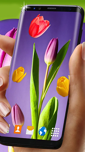 Kostenlos Live Wallpaper Tulips by 3D HD Moving Live Wallpapers Magic Touch Clocks für Android Smartphones und Tablets downloaden.