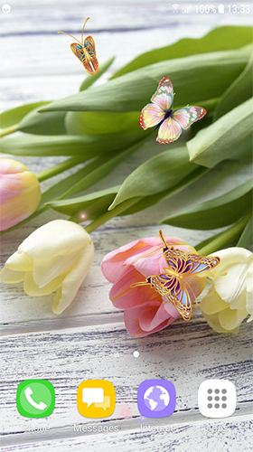 Download Blumen Live Wallpaper Tulips by Live Wallpapers 3D für Android kostenlos.