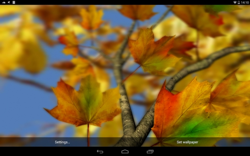 Download Live Wallpaper Autumn leaves 3D by Alexander Kettler für Android 4.0.4 kostenlos.