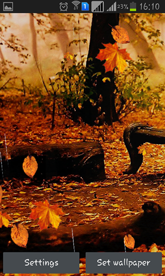 Download Live Wallpaper Autumn rain für Android 4.0.4 kostenlos.
