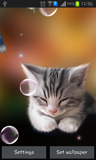 Download Live Wallpaper Sleepy kitten für Android 4.1.2 kostenlos.