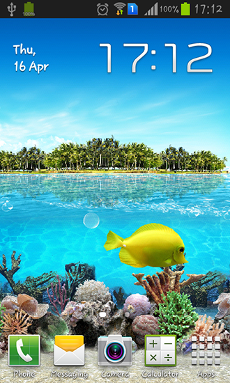Download Live Wallpaper Tropical ocean für Android 4.1 kostenlos.