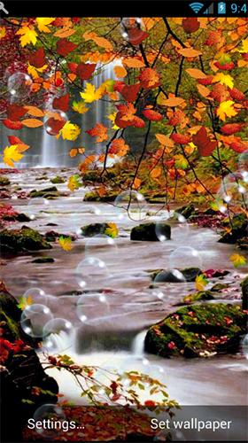 Herbst kostenlos desktop hintergrundbilder HD Herbst