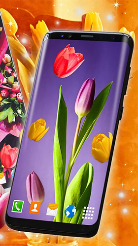 Tulips by 3D HD Moving Live Wallpapers Magic Touch Clocks