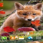 Live Wallpaper Autumn by Amax LWPS apk auf den Desktop deines Smartphones oder Tablets downloaden.