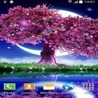 Live Wallpaper Cherry in blossom apk auf den Desktop deines Smartphones oder Tablets downloaden.