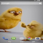 Live Wallpaper Chickens apk auf den Desktop deines Smartphones oder Tablets downloaden.