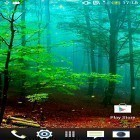 Neben Live Wallpapern für Android Racing car kannst du die apk des Hintergrunds Forest by Wallpapers and Backgrounds Live gratis herunterladen.