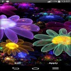 Download Glowing flowers by My Live Wallpaper kostenlos live wallpaper für Android Handys und Tablets.