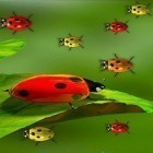 Neben Live Wallpapern für Android Fireflies by Wallpapers and Backgrounds Live kannst du die apk des Hintergrunds Ladybugs by 3D HD Moving Live Wallpapers Magic Touch Clocks gratis herunterladen.