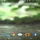 Live Wallpaper Real rain apk auf den Desktop deines Smartphones oder Tablets downloaden.