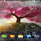 Live Wallpaper Romantic apk auf den Desktop deines Smartphones oder Tablets downloaden.