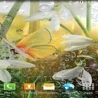 Live Wallpaper Spring by Amax LWPS apk auf den Desktop deines Smartphones oder Tablets downloaden.