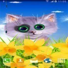 Live Wallpaper Spring cat apk auf den Desktop deines Smartphones oder Tablets downloaden.