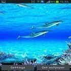 Live Wallpaper Dolphins sounds apk auf den Desktop deines Smartphones oder Tablets downloaden.