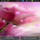 Neben Live Wallpapern für Android Rainbow by Free Wallpapers and Backgrounds kannst du die apk des Hintergrunds Pink roses gratis herunterladen.