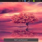 Neben Live Wallpapern für Android Rainbow by Free Wallpapers and Backgrounds kannst du die apk des Hintergrunds Red tree gratis herunterladen.